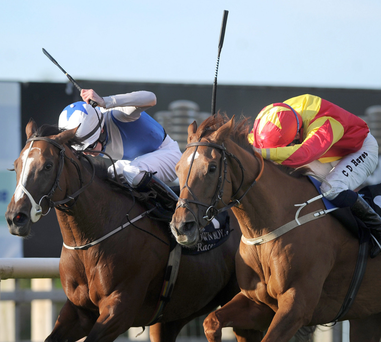 Out in front: Annagh Haven (left), with Chris Hayes on board, wins the Magners Irish Cider Fillies Handicap at Down Royal