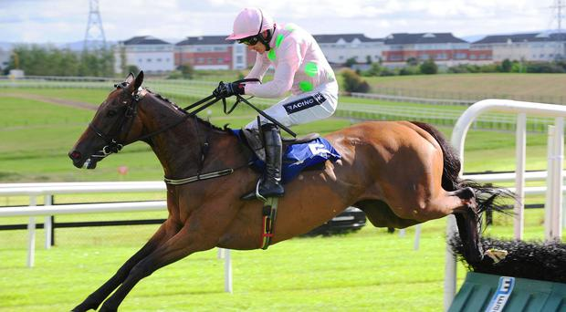 Long Dog jumps the last on his way to scoring at Galway