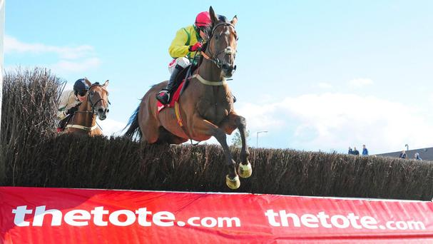 Shanahan's Turn jumps the last in front before winning the Galway Plate