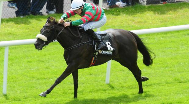 Princess Aloof wins at Galway