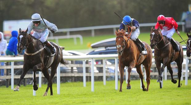 Clondaw Warrior isn't for catching at Galway