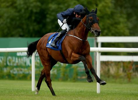 Fields of dreams: Seamie Heffernan rides Fields Of Athenry to victory last night in the Ballyroan Stakes at Leopardstown