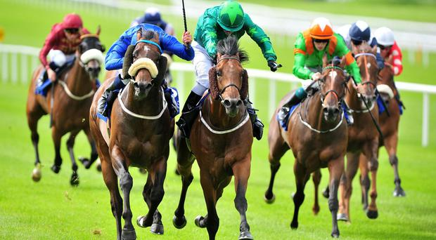 Mattmu (centre) gets the better of Toscanini (blue) to land the Phoenix Sprint Stakes at the Curragh