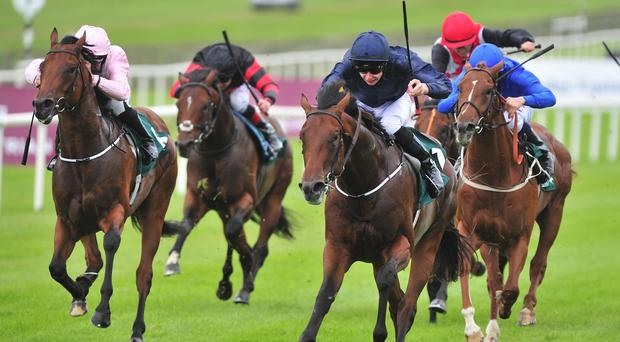 Air Force Blue (centre) leads home his rivals in the Keeneland Phoenix Stakes at the Curragh
