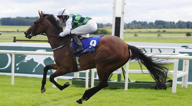 How High The Moon wins at the Curragh