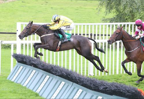 Winning combination: Willie Mullins' Westerner Lady, ridden by Paul Townend, on the way to winning the Toals Maiden Hurdle at Downpatrick, completing a double for trainer and jockey