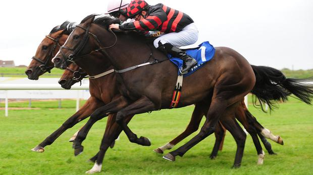 Recollection (near) finishes fast to score at Tramore