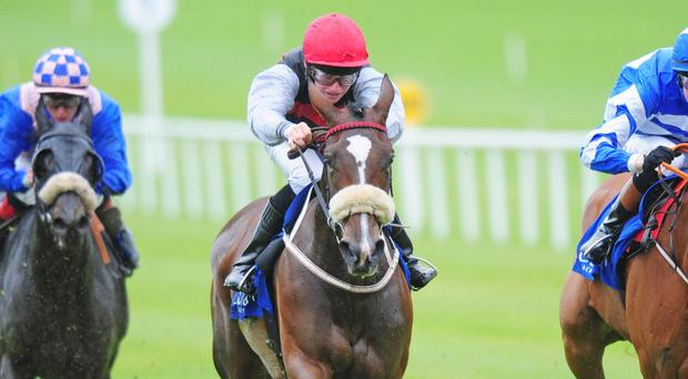 Cailin Mor winning at the Curragh