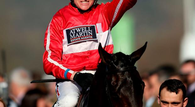 Top picks: Barry Geraghty should enjoy success with some fancied mounts at Downpatrick