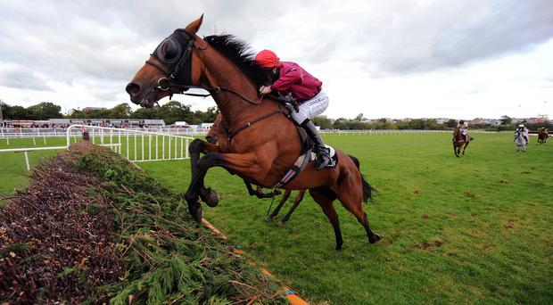 Rogue Angel en route to winning the Kerry National