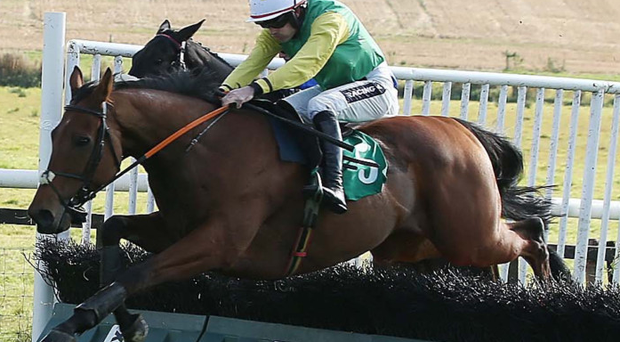 Hedge your bets: Star jockey Ruby Walsh rides Sarwistan to victory in the All Things Byerley Maiden Hurdle at Downpatrick