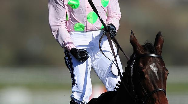Festival fever: Top jockey Ruby Walsh has several chances on the opening day of the Down Royal Festival