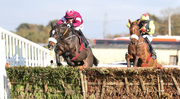 Odds on: Bryan Cooper (left), riding Cogryhill to victory in a Down Royal double yesterday, will today attempt to guide Don Cossack to glory in the big JNwine.com Champion Chase