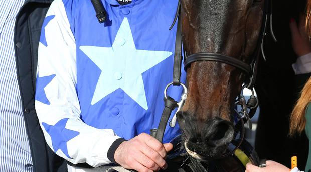 Ruby sparkles: Ruby Walsh after winning on Listen Dear yesterday at Down Royal