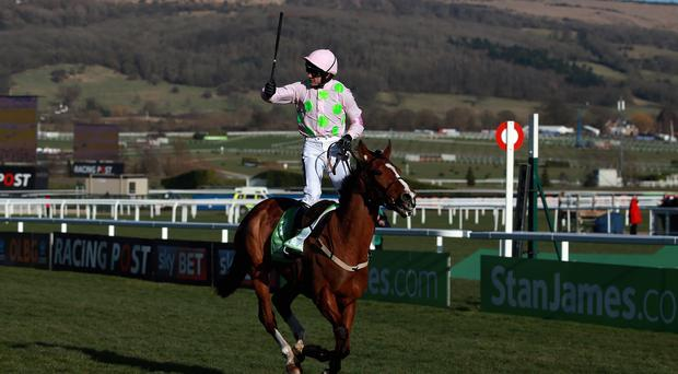 Faugheen is one of six contenders for the Morgiana Hurdle