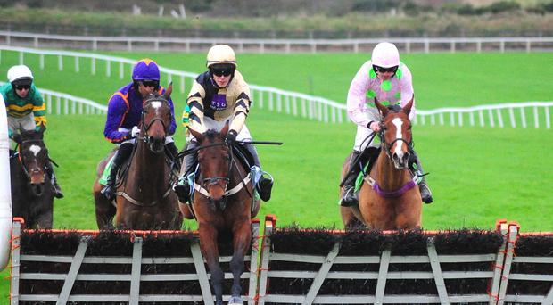 Nichols Canyon beats Faugheen at Punchestown