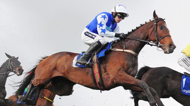 Open Eagle shows his class at Fairyhouse