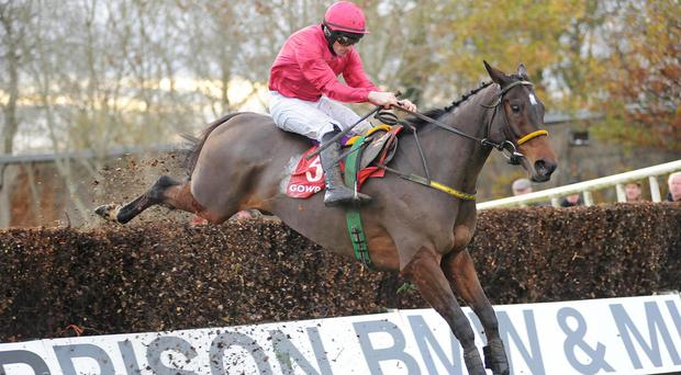 Monksland takes well to fences