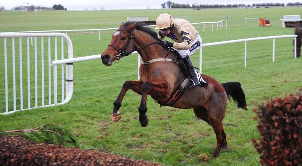 Shaneshill is good at his fences