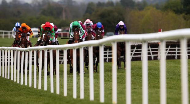 Action from Punchestown