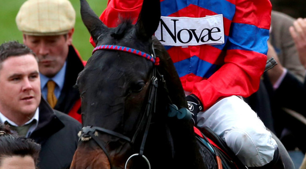 Strike gold: Nico de Boinville won this year's Cheltenham Gold Cup on Coneygree