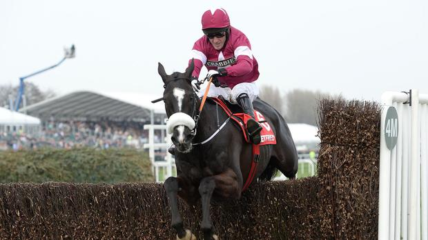 Don Cossack