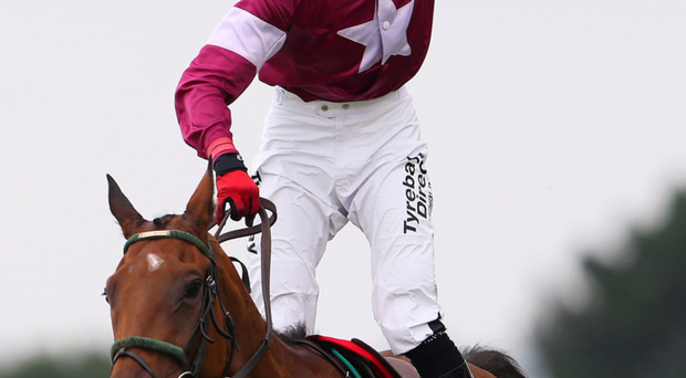 Whip hand: Road To Riches, winner of last year's Down Royal Festival feature, is among the favourites for the big Lexus Chase on Monday at Leopardstown