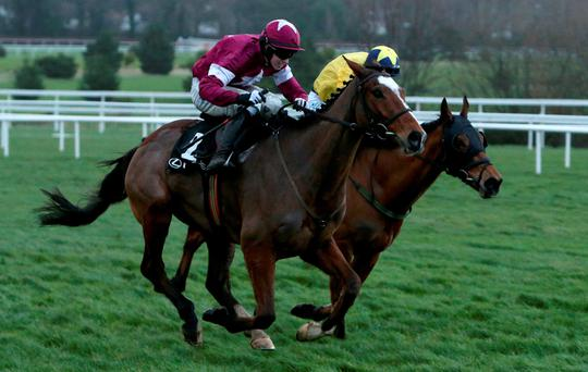 Don a winner: Don Poli, ridden by Bryan Cooper (left), on way to winning the Lexus Steeplechase feature race during day three of the Christmas Festival at Leopardstown yesterday
