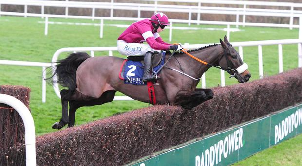 No More Heroes on his way to scoring at Leopardstown