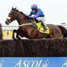 Cue Card is aiming to win the Betfair Chase at Haydock today for a third time
