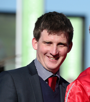 Eyes on prize: Neil Mulholland has high hopes for Fox Norton at Warwick on Saturday