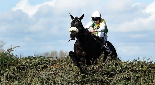 Many Clouds ridden by Leighton Aspell won the 2015 Grand National.