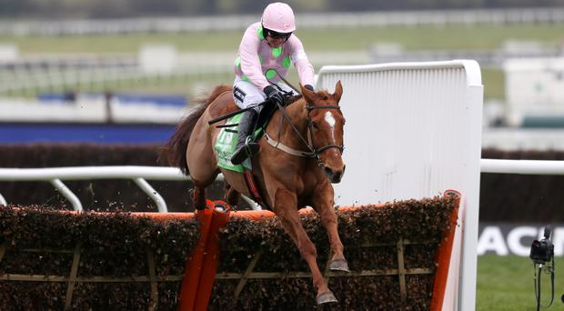 Annie Power is brilliant in the Champion Hurdle