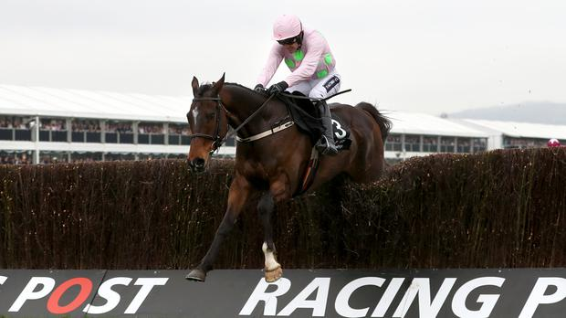 Douvan is imperious in the Arkle