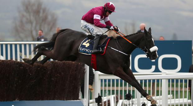 Don Cossack raced to Gold Cup success at Cheltenham