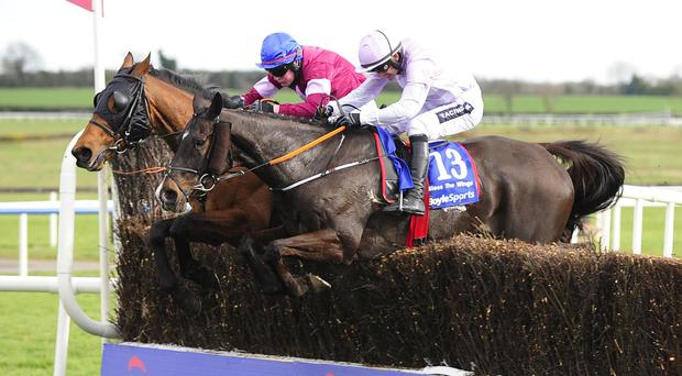 Rogue Angel (blue cap) takes the last in the Irish National alongside Bless The Wings