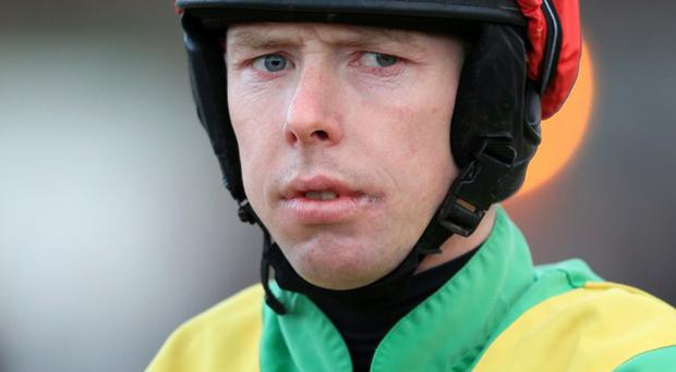 The Shepherd King is trained in Armagh by Keith Watson, who has booked in-form jockey Andrew Lynch for the job