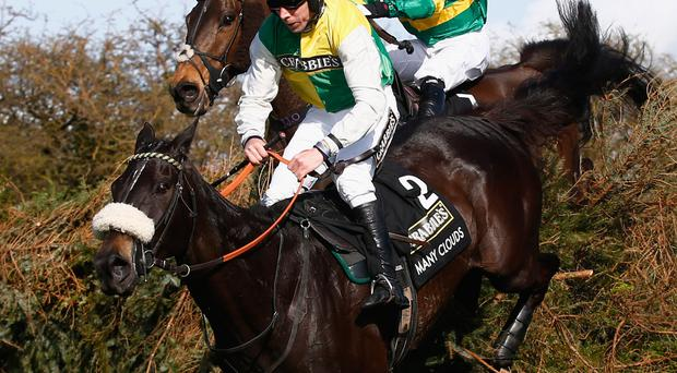 Cloud nine: Many Clouds and Leighton Aspell, ahead of the AP McCoy-ridden Shutthefrontdoor, on the way to Grand National glory last year at Aintree