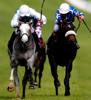 Hats off: Algometer (left) wins the Cocked Hat Stakes at Goodwood yesterday under a strong ride from Jim Crowley
