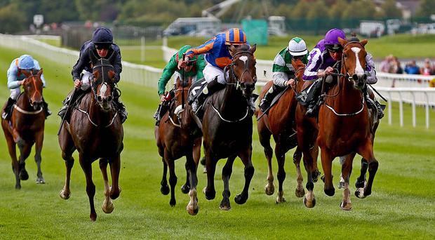 Pair of aces: Minding (right), under Seamie Heffernan, gets the better of the Joseph O'Brien-ridden Ballydoyle (left) in the Moyglare Stud Stakes at the Curragh