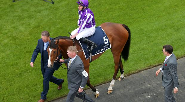 Minding before the Oaks