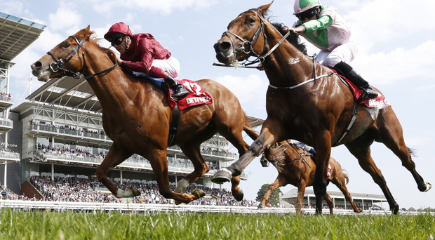 Funtime Frankie: Frankie Dettori (left) wins the Dante Stakes at York last month on today's Derby favourite Wings Of Desire