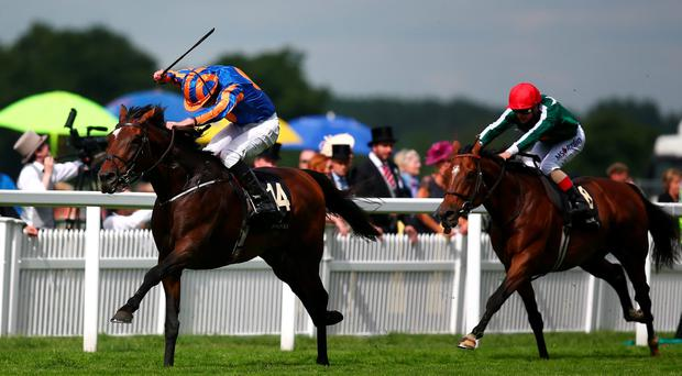 Golden moment: Order Of St George, a winner at Down Royal less than 12 months ago, on the way to victory in the Gold Cup yesterday at Royal Ascot