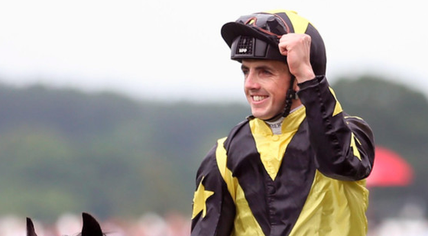Eyes on prize: Martin Harley has big-race hopes tomorrow at Haydock