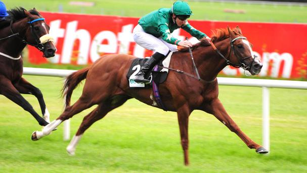 Decorated Knight storms to victory in the Meld Stakes