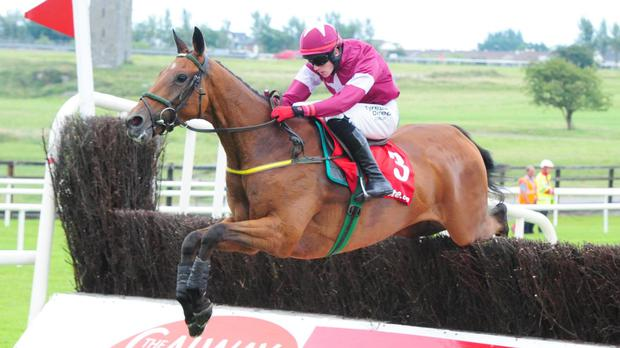 Road To Riches on his way to winning the 2014 Galway Plate