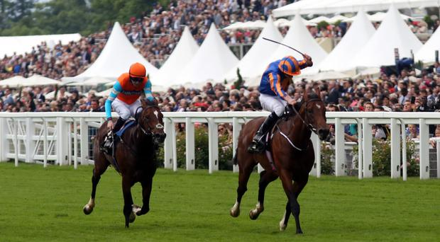 Churchill, right, was given a real fright at Leopardstown
