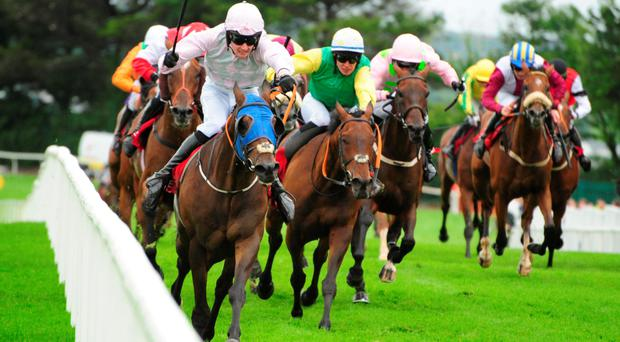 Out in front: Swamp Fox, ridden by Barry Browne, on the way to winning the Galway Festival's opening night feature, the Connacht Hotel Handicap