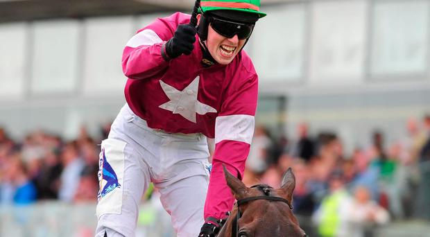 On a Plate: Lord Scoundrel, with a delighted Donagh Meyler aboard, after winning last night's historic Galway Plate
