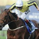 Tom Queally rides Big Orange to victory in the Londonmetric Noel Murless Stakes at Ascot in 2014